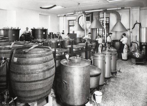 Maraschino liqueur: Luxardo factory, Zara, detail 02 (crt-01)