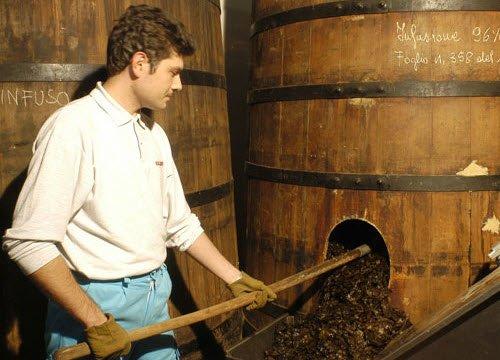 Maraschino liqueur: The preparation of Maraschino: infusion (crt-01)