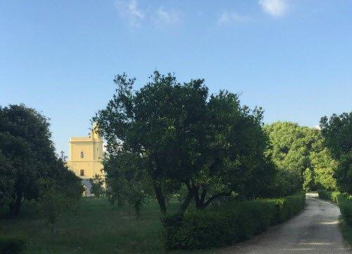 Margherita pizza: Capodimonte - Tower.