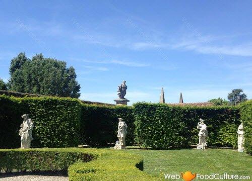 Vino Friularo: Dominio di Bagnoli, dettaglio giardino.