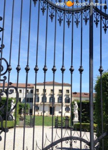 Vino Friularo: Dominio di Bagnoli, ingresso.