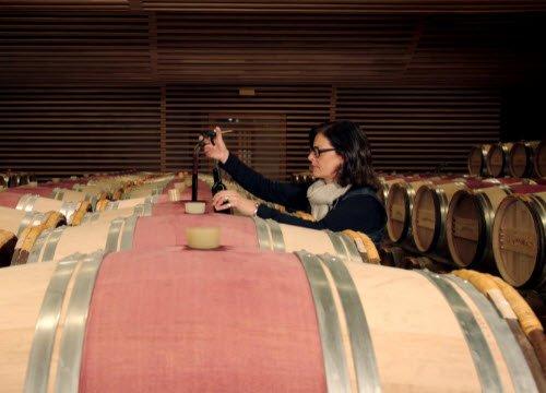 Wine Masters: Bottaia della Famiglia Bourgeois (crt-01)