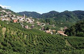 Prosecco wine: The Prosecco hills.