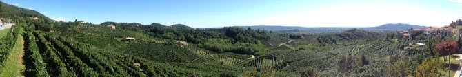 Prosecco wine: Conegliano-Valdobbiadene lanscape.