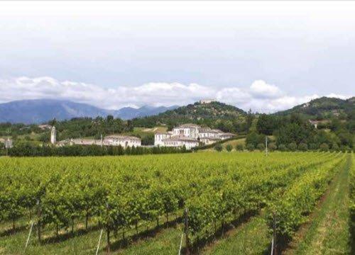 Prosecco wine: Asolo Prosecco Superiore DOCG - Landscapes 04 (crt-02)