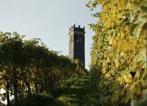 Prosecco wine: Conegliano Valdobbiadene Prosecco Superiore DOCG - Landscapes 01 (crt-01)