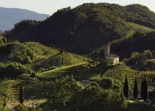 Prosecco wine: Conegliano Valdobbiadene Prosecco Superiore DOCG - Landscapes 02 (crt-01)