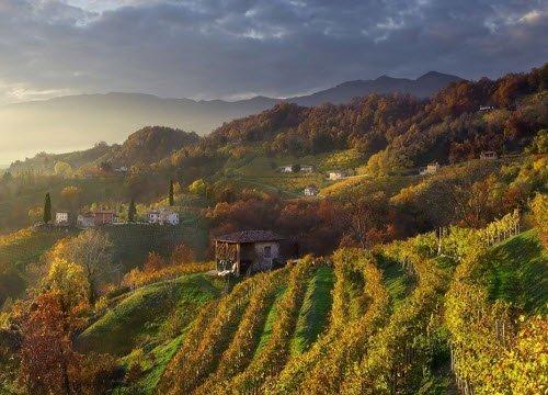 Prosecco wine: Conegliano Valdobbiadene Prosecco Superiore DOCG - Landscapes 03 (crt-01)