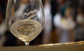 Prosecco wine: The Prosecco DOCG Consortia (crt-02)