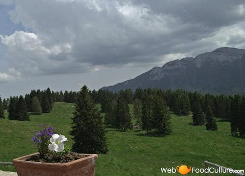 Asiago Cheese: The Asiago landscapes (5)