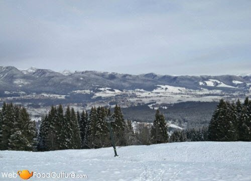 Asiago Cheese: The Asiago landscapes (8)
