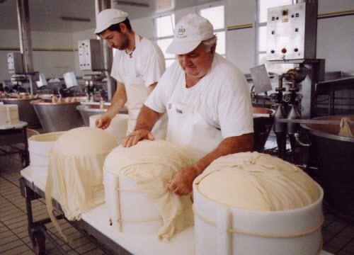Il Parmigiano nella 'fasciera' (crt-01)