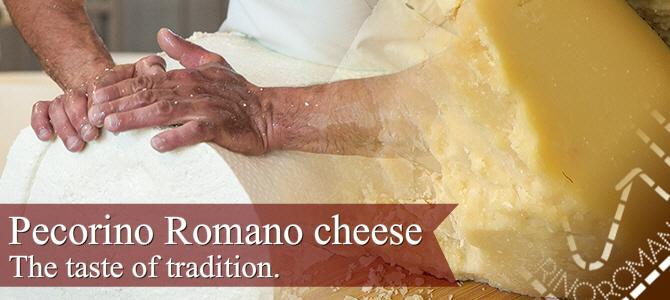Pecorino Romano cheese, the taste of tradition (crt-01)