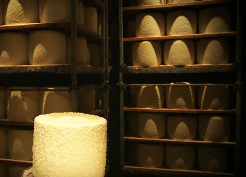 Pecorino Romano PDO: marking, salting and seasoning (crt-01)