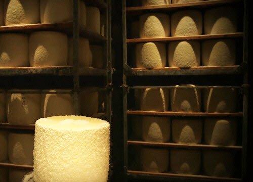 Pecorino Romano PDO: the seasoning (crt-01)