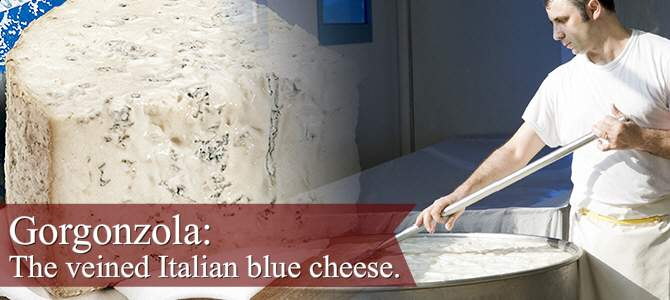Gorgonzola: the veined Italian blue cheese (crt-01)