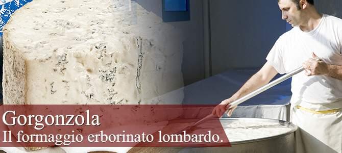 Gorgonzola, il formaggio erborinato lombardo (crt-01)