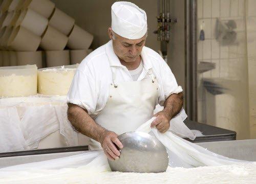 Gorgonzola PDO: making the curd (crt-01)