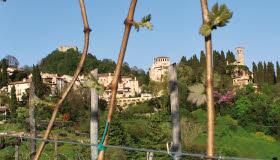 Prosecco wine: Asolo (crt-02)